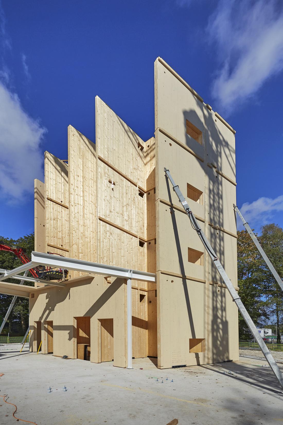 Triodos houten kern